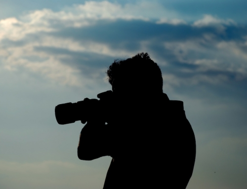 ACC Sask 2014 Photo Contest